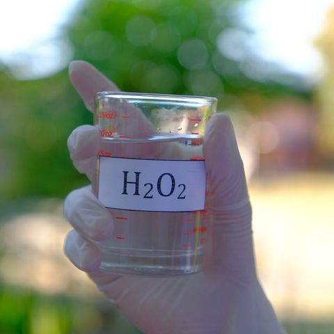 Hydrogen peroxide solution in a beaker