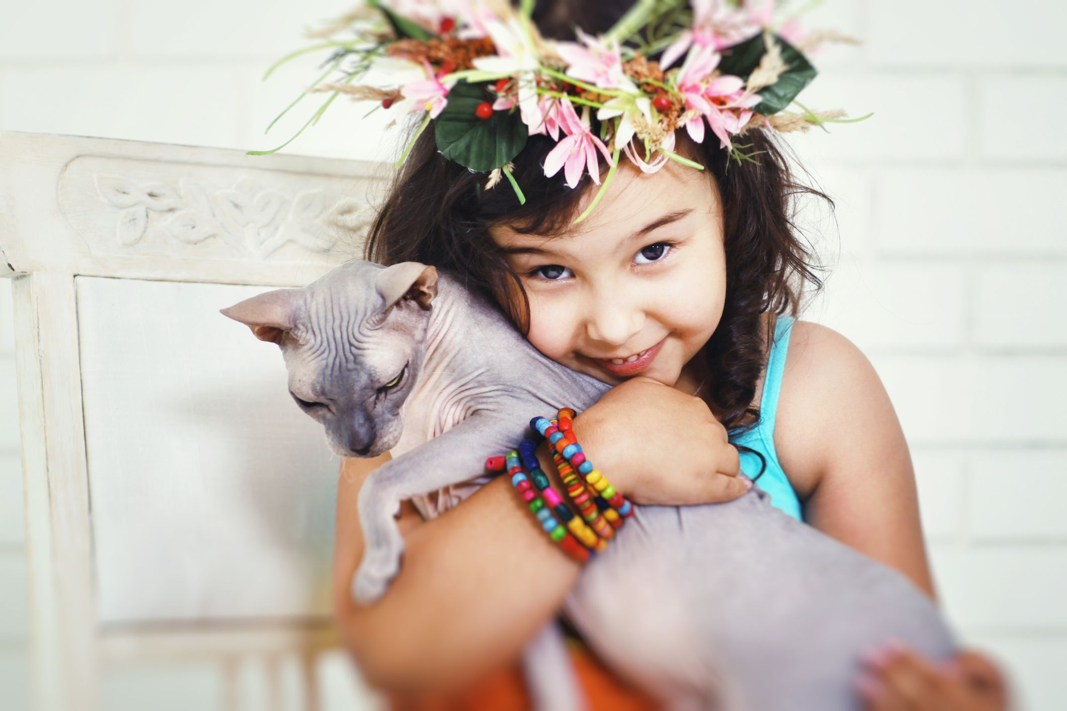 """13 """"Hypoallergenic"""" Cat Breeds That Won't Give You the Sniffles"""