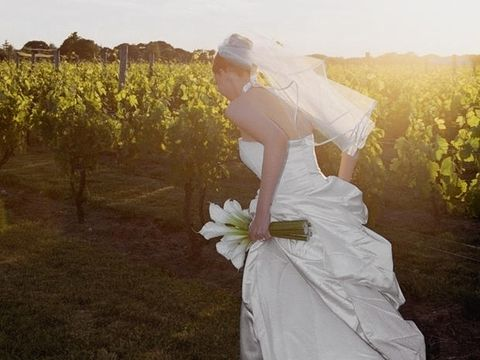Clothing, Dress, Bridal clothing, Photograph, Petal, Happy, Wedding dress, Bride, People in nature, Gown,
