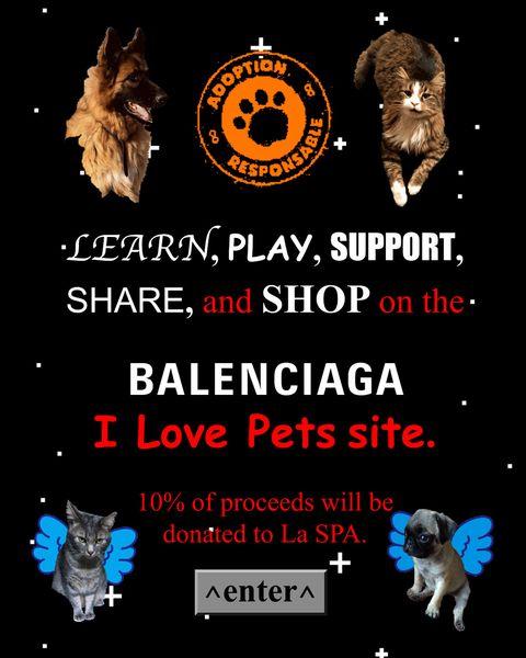 """身近な動物の命を守るためのカプセルコレクション""""i love pets""""が、バレンシアガから発売。tシャツやキーホルダーには、社員が買っている保護犬、保護猫の写真が"""