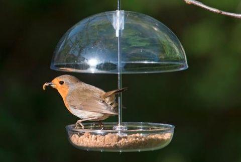 I Love Robins Feeder - RSPB