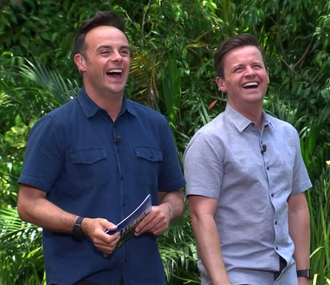 i'm a celebrity ant and dec