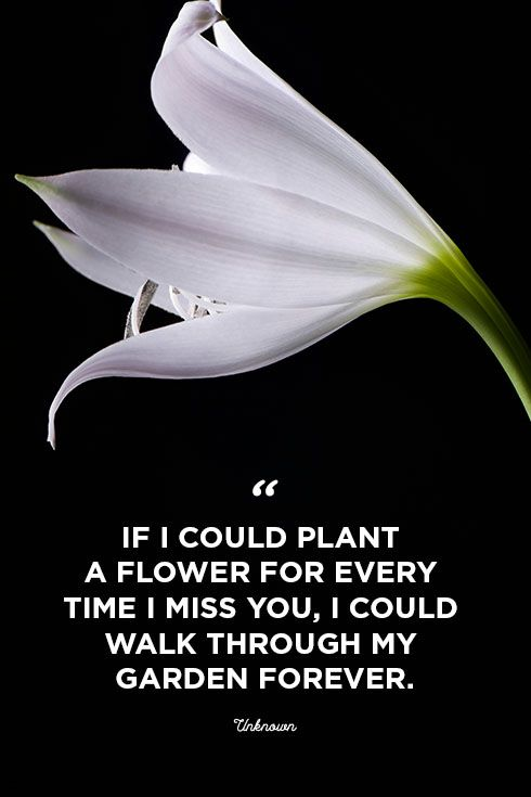 I miss you if i could