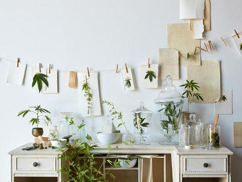 Room, Interior design, Interior design, Porcelain, Artifact, Vase, Serveware, Still life photography, Pottery, Cabinetry,