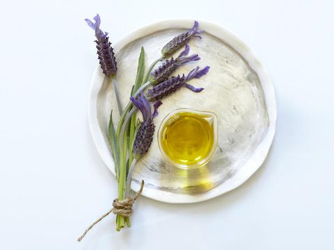 Fluid, Liquid, Flower, Serveware, Amber, Flowering plant, Botany, Lavender, Oil, Bud,