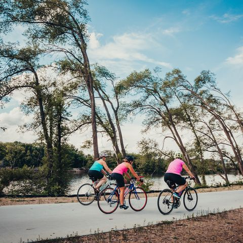 Cycling, Bicycle, Cycle sport, Sky, Road cycling, Road bicycle, Vehicle, Outdoor recreation, Tree, Recreation,