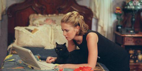 Cat, Beauty, Felidae, Small to medium-sized cats, Whiskers, Sitting, Long hair, Black cat, Ear,
