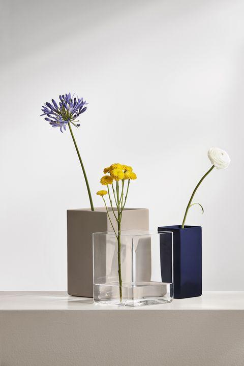 Flower, Petal, Artifact, Flowering plant, Vase, Still life photography, Botany, Cut flowers, Flower Arranging, Lavender,