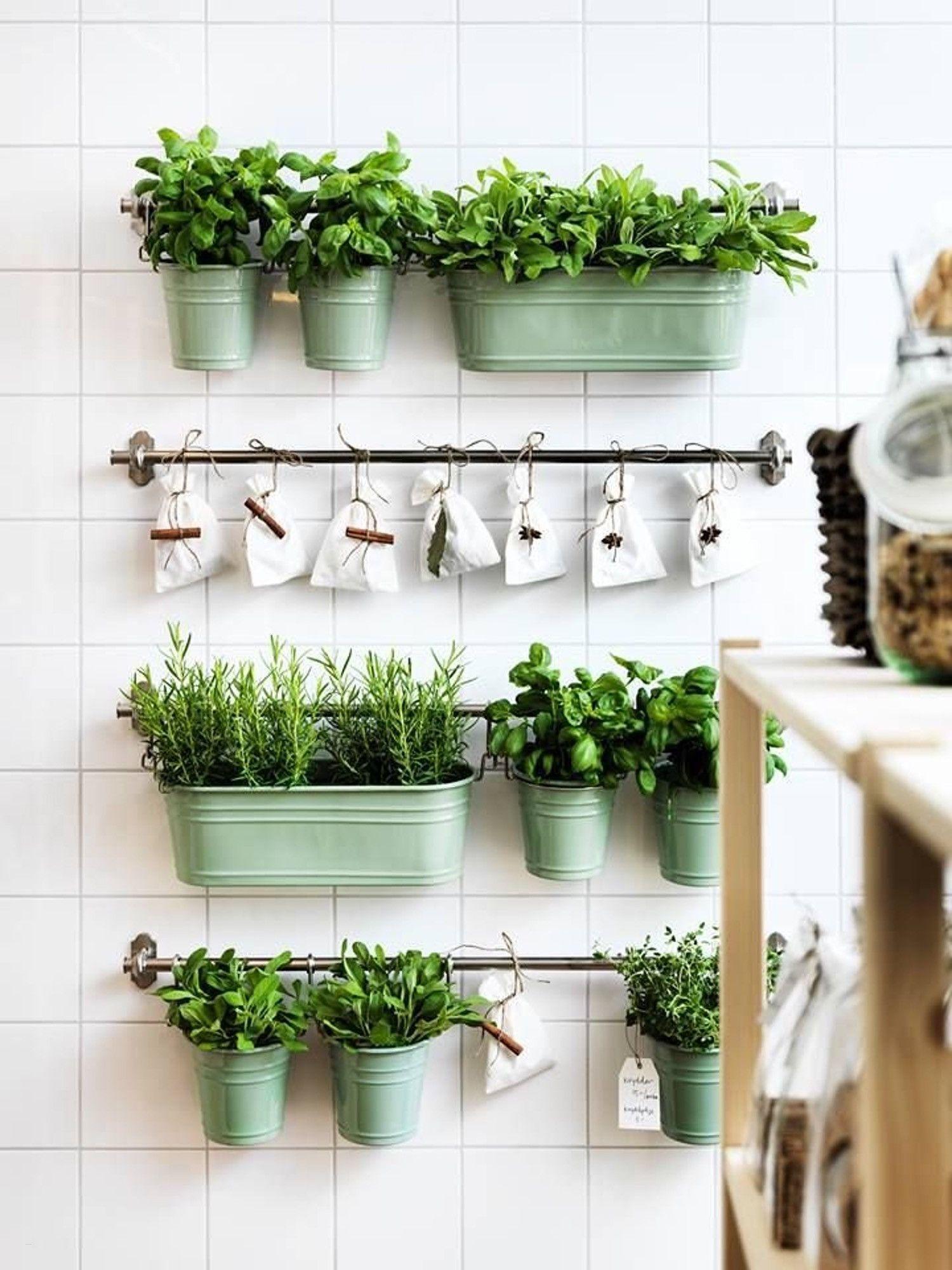 Ideas Para Montarte Dentro De Casa Tu Jardín De Aromáticas