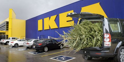 Ikea Christmas Tree Sale Pick Up A Christmas Tree From Ikea For 5