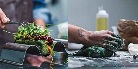 Hand, Vegetable, Organism, Plant, Room, Leaf vegetable, Superfood, Food, Vegetarian food, Herb,