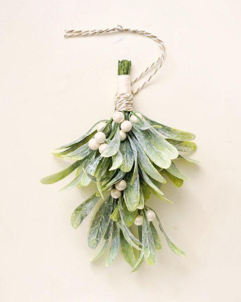 Plant, Leaf, Flower, Tree, Fashion accessory, Jewellery, Twig, Pine family, Herb, Pine,