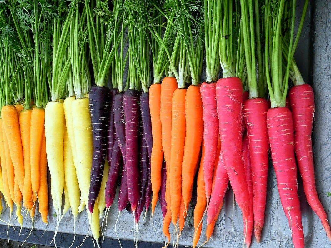 Vibrantly Colorful Rainbow Carrots Are the Newest Gardening Trend You'll Want to Hop On This Fall