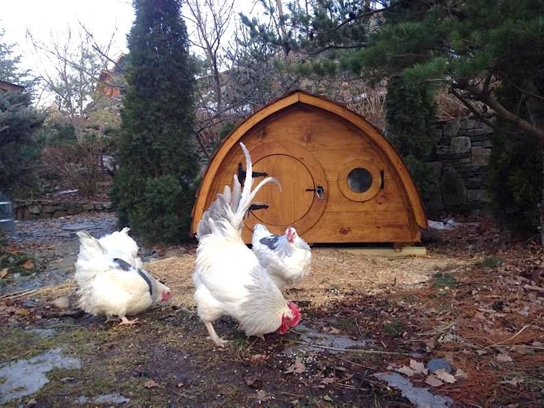Etsy Is Selling The Cutest Chicken Coop Hobbit Homes To Brighten Up Your Backyard