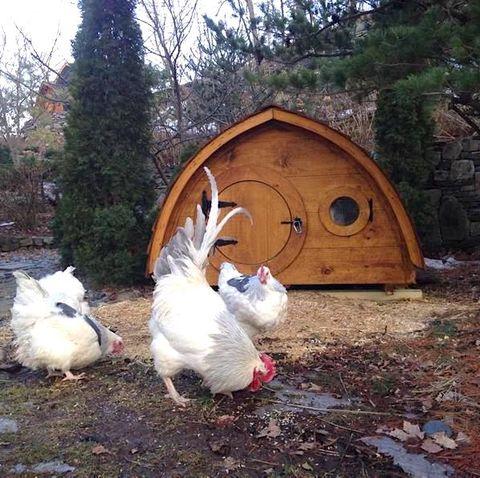 chicken coop hobbit home etsy