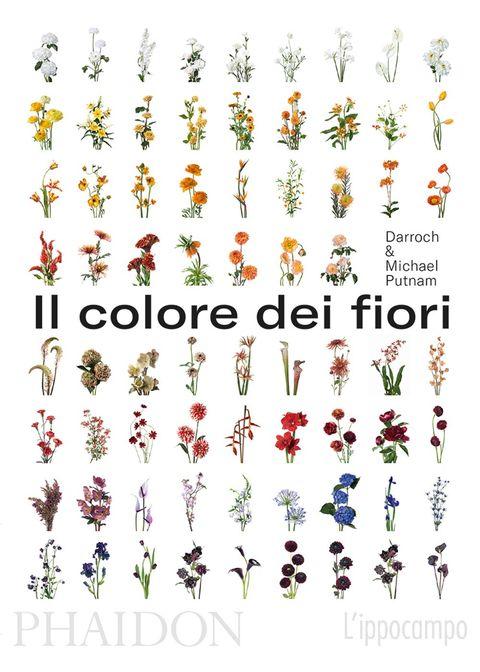 Il colore dei fiori Putnam