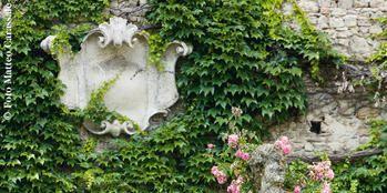 Statue, Sculpture, Plant, Botany, Tree, Ivy, Garden, Monument, Shrub, House,