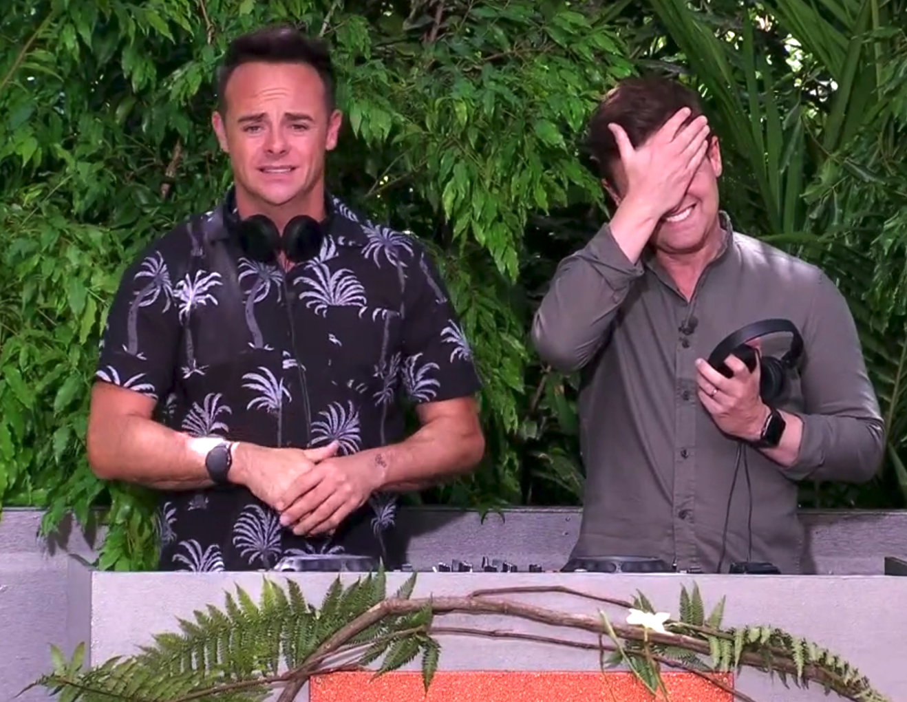 I'm A Celebrity's latest Bushtucker Trial was so disgusting even Ant and Dec were grossed out
