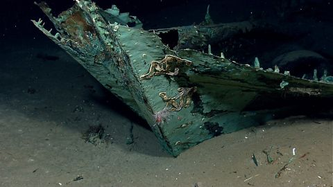 Water, Green, Shipwreck, Vehicle, Ship, Watercraft,