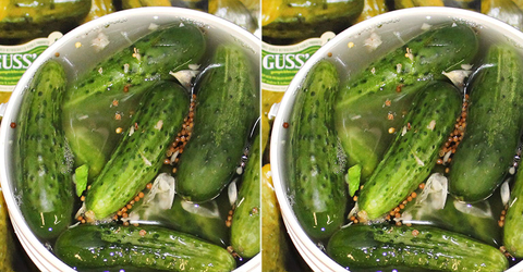 GoldBelly Is Selling 5 Gallons Of Pickles For $200