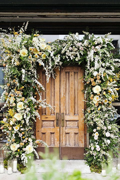 White, Flower, Door, Spring, Plant, House, Wood, Botany, Window, Tree,