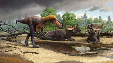 dinosaur t.rex tiny