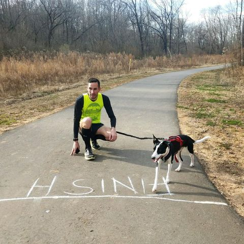 famous running dogs