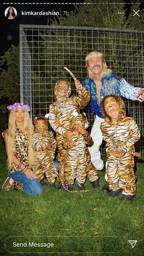 kim and her kids posing in their tiger king costumes