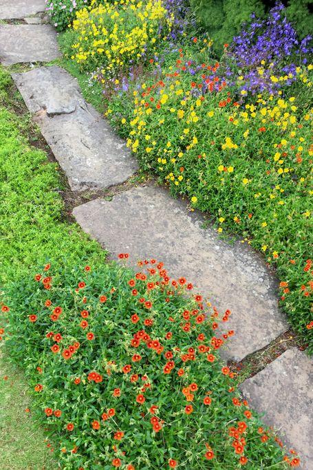 15 Best Gardening Edging Ideas, Ideas For A Cottage Garden Border