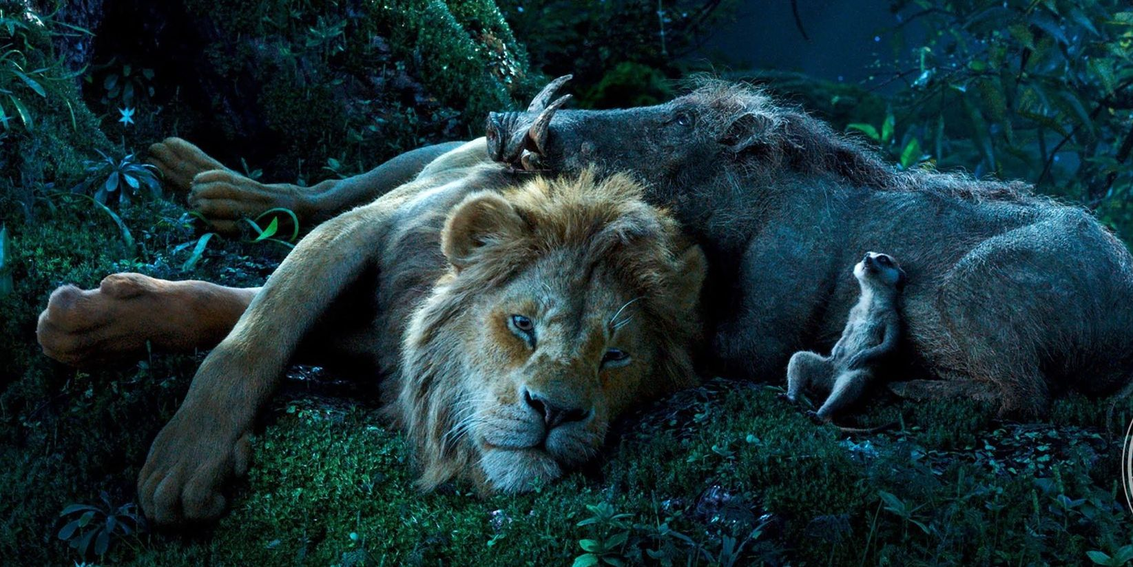 Rey leon timon pumba