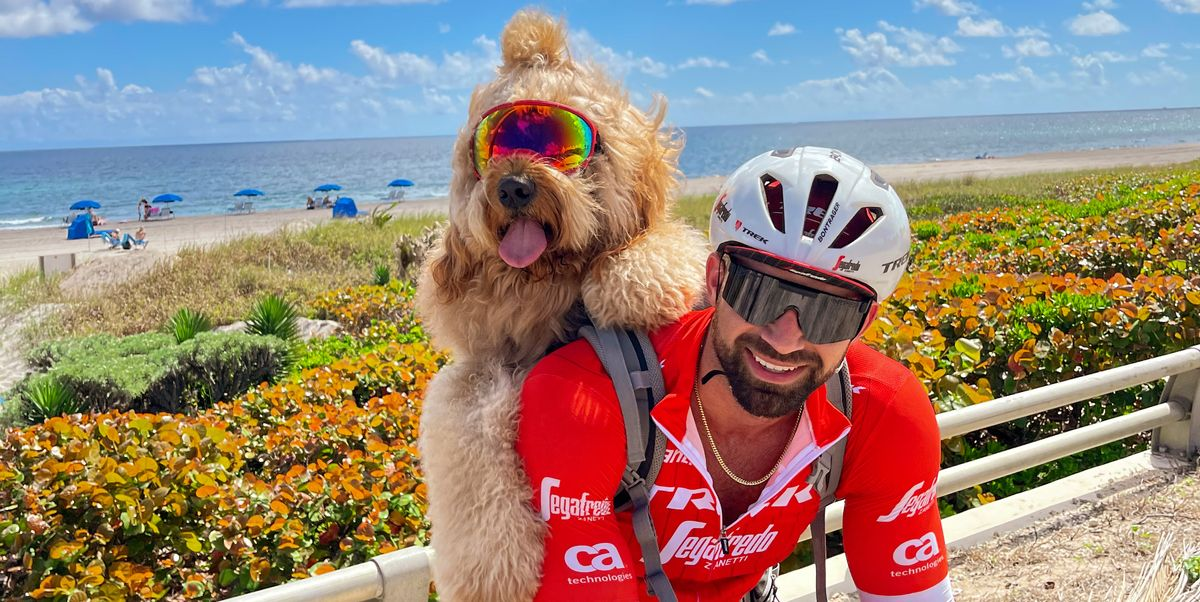 You've Gotta See This Goldendoodle That Loves to Go on Bike Rides
