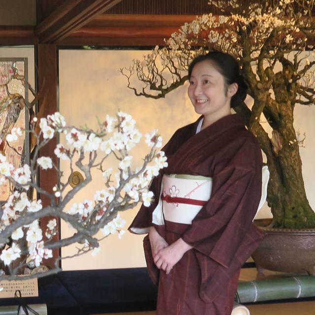 朝香沙都子さん梅の季節の装い