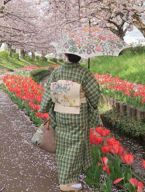 朝香沙都子さん 木綿の着物