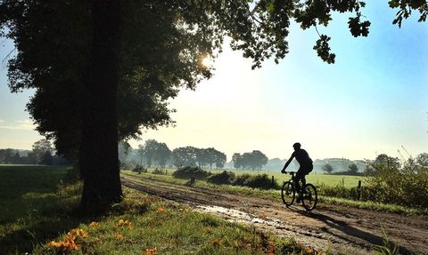 cycling, bicycle, sky, mountain bike, vehicle, tree, cycle sport, morning, recreation, grass,