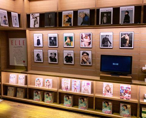 Shelf, Collection, Shelving, Room, Building, Furniture, Hall of fame,