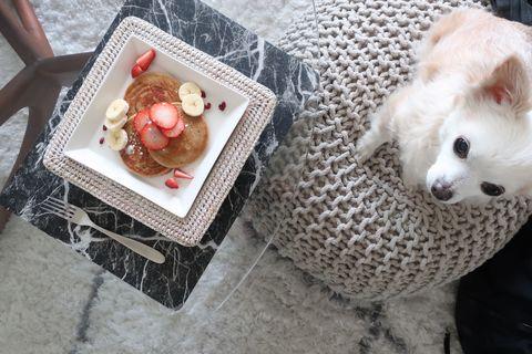チワワとパンケーキ