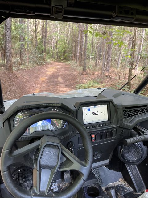 inside the rzr trail, looking towards the trail through the woods