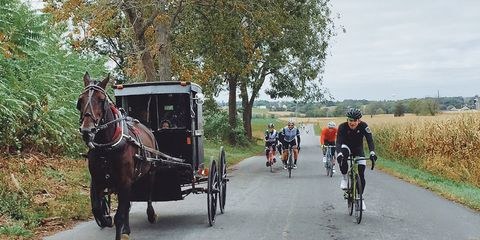bicycling fall classic riders race horse-drawn carriage in lehigh valley