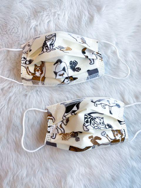 貓奴必須收編!《優美特》兩款「貓咪口罩」虎斑、黑貓萌翻了,開賣資訊、通路總整理