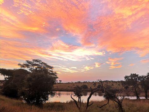 Sky, Natural landscape, Nature, Cloud, Sunset, Sunrise, Tree, Reflection, Morning, Atmospheric phenomenon,