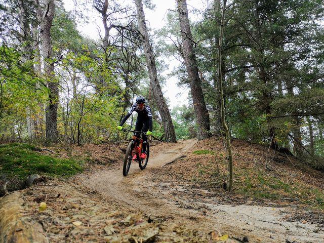mountainbike, mountainbiken, beschutting, bos, minder koud