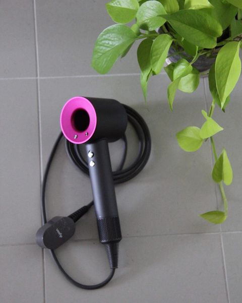 Hair dryer, Pink, Technology, Material property, Electronic device, Gadget, Plant,