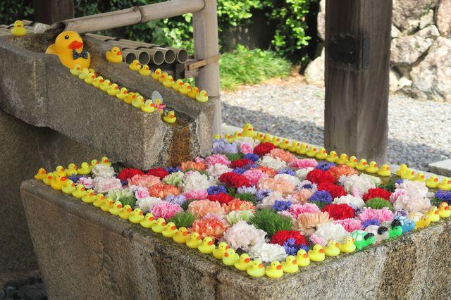 京都 金戒光明寺の手水舎
