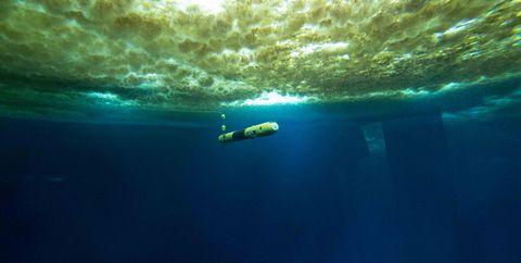 Underwater, Water, Sky, Sea, Ocean, Landscape, Marine biology,
