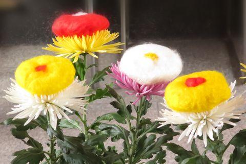 重陽の節句 京都・市比賣神社の「菊の被せ綿」