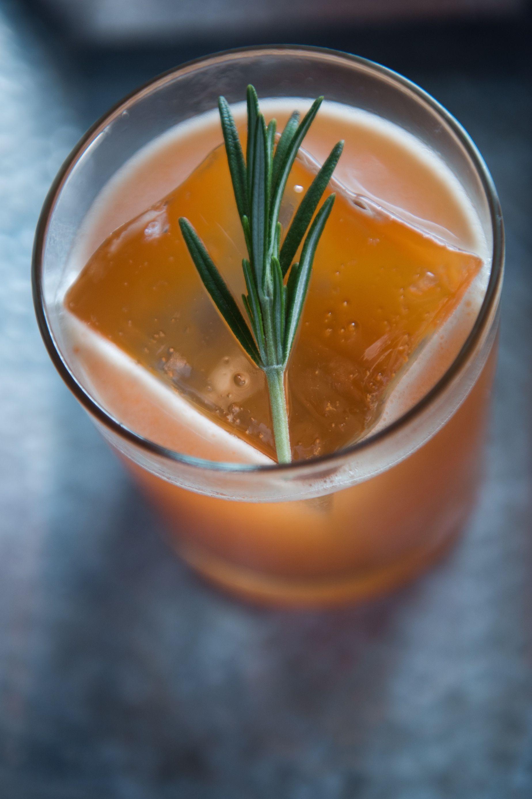 autumn-gin-cocktails