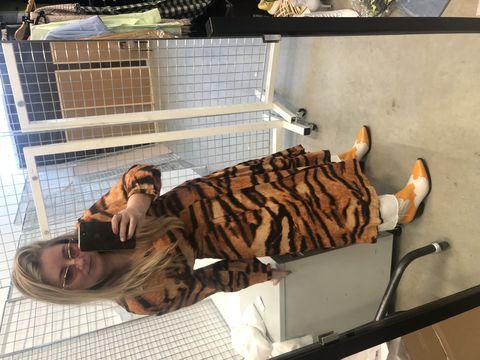 ootd-elle-zebra-print