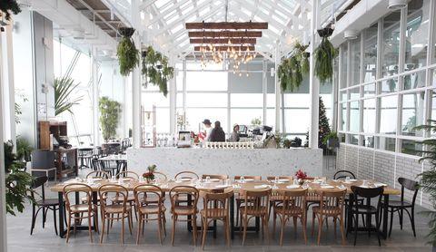 首爾,旅遊,設計,咖啡,玻璃屋.韓食