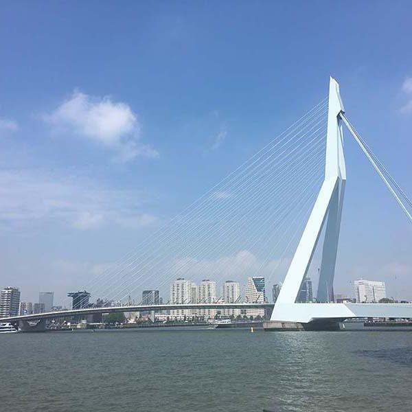 Rotterdam servizio di incontri posti migliori per pubblicizzare siti di incontri