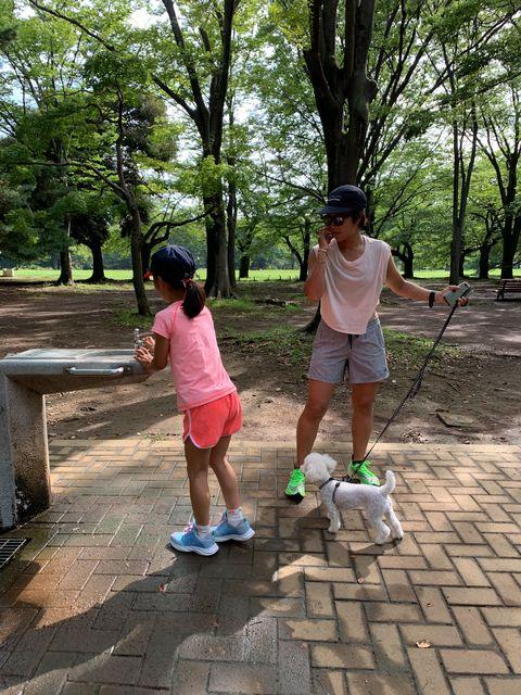 Leisure, Child, Play, Tree, Fun, Vacation, Summer, Recreation, Park,